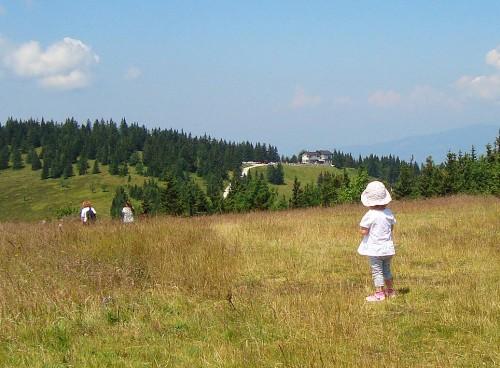 Pot proti Ribniškem vrhu ni strma, v daljavi pa se vidi Ribniška koča.