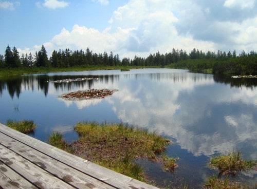 Naravni rezervat Ribniško ali Jezersko jezero