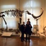 7 idej v katere muzeje z otrokom