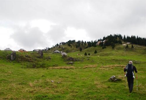140914_krave na Mali Planini_desno zgoraj Jars_ki dom