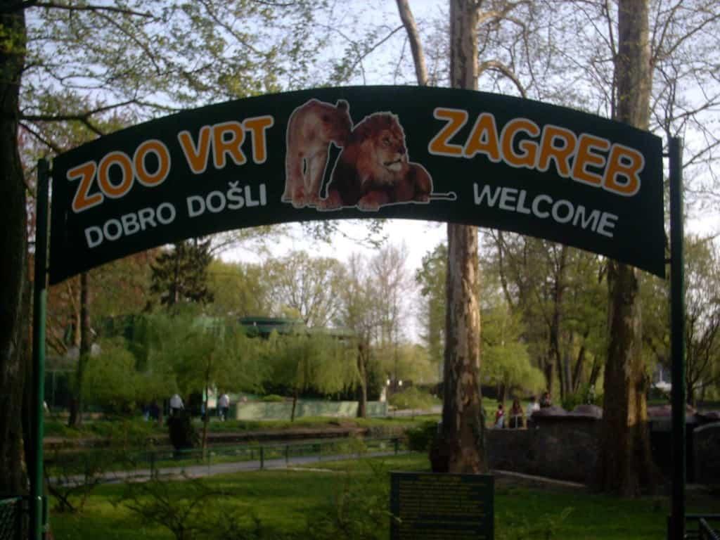 Zoo Park Zagreb Ko V Mestnem Parku Zaslisis Leva Kamzmulcem