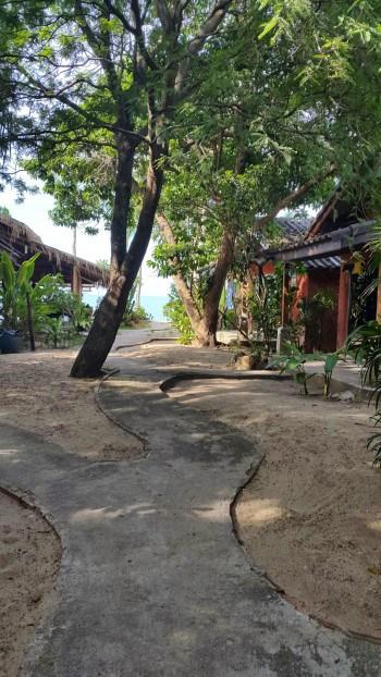 Potka do zasebne plaže iz našega bungalova.
