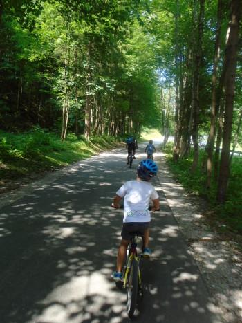 Del poti poteka tudi po senci (Od Kranjske gore do Belopeških jezer)
