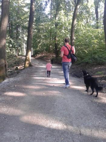 Pot cez Golovec je se vsaj zaenkrat manj obljudena (Golovec, Ljubljana)