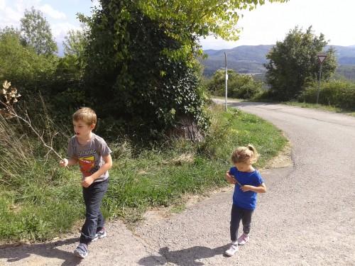 Sprehod do okoliških kmetij. Med potjo pa smo nabrali in pojedli fige in robide (Barberino di Muggelo, Toskana)