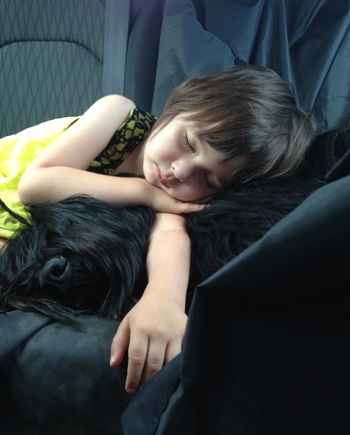 Na poti domov, Isabela in Lady