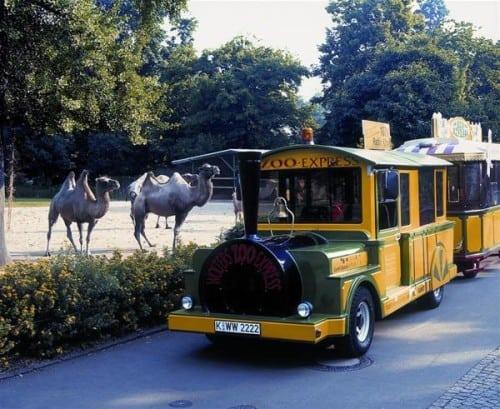 zoo-express-002