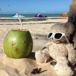 7 razlogov, zakaj bi ponovili roadtrip z mulcem po severu Brazilije