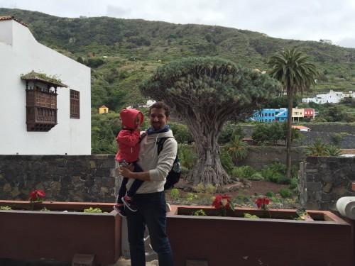Ob najstarejšem drevesu na svetu, ki naj bi štelo več kot 1000 let v kraju Icod de los Vinos na S otoka Tenerife (Kanarsko otočja, Španija)