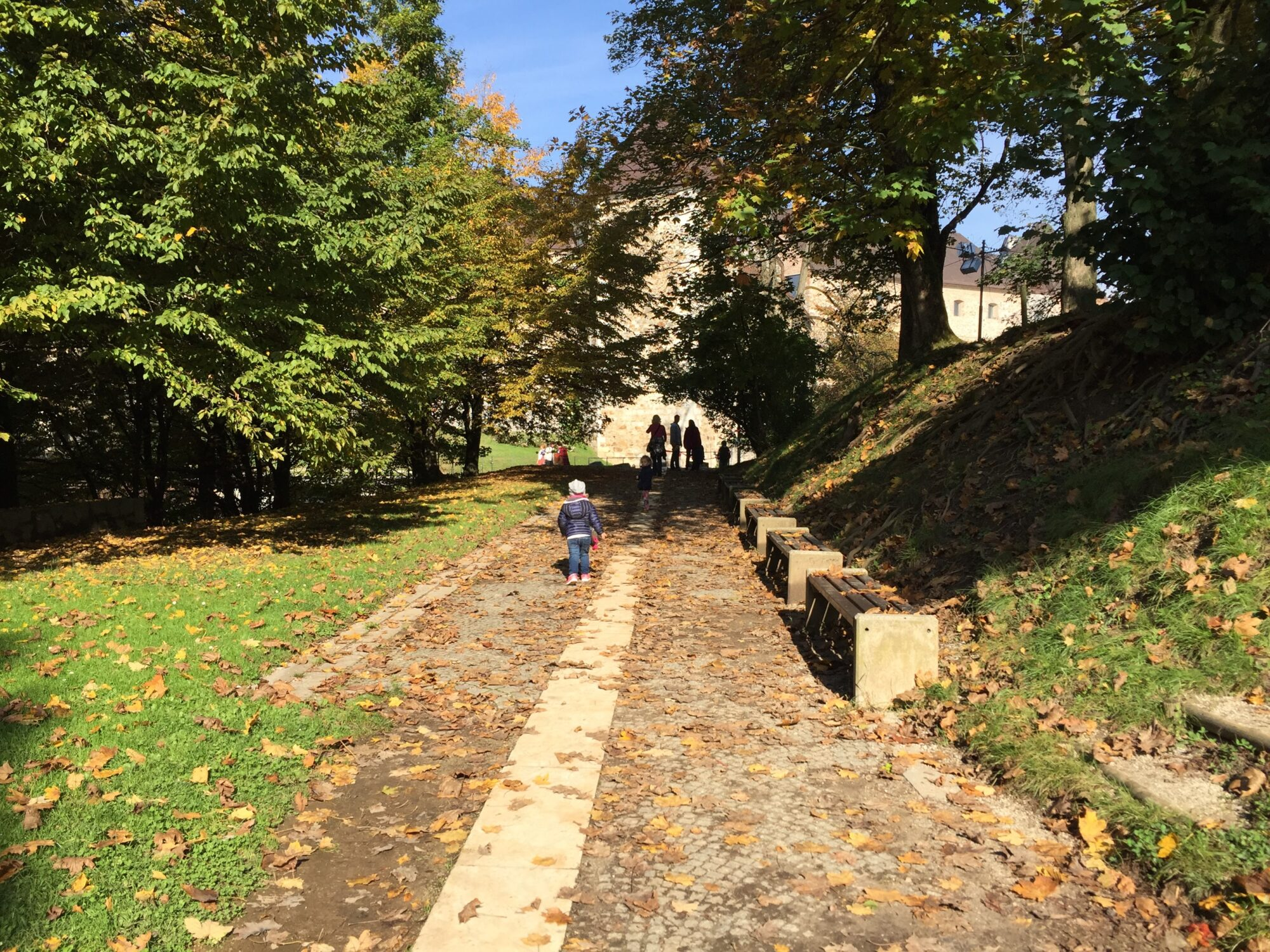 Urejene zelene poti, Ljubljana