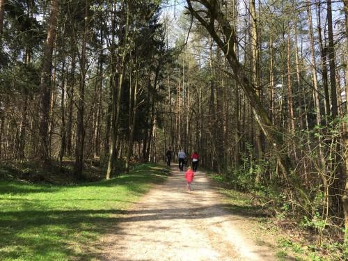 Na poti na Orle z Urha. Pot je prijetna in položna, Ljubljana