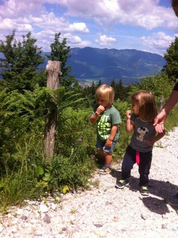 V okolici je ogromno vrhov, ki so primerni za obisk z otroki. Mi smo obiskali Čreto