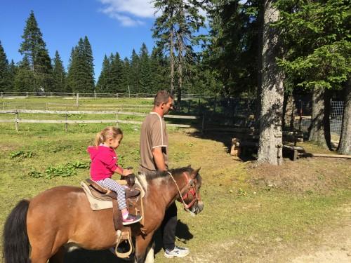Jahanje konjev, Pohorje