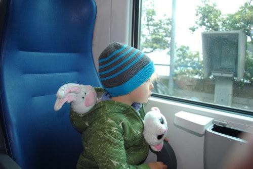 Mulc opazuje pokrajino z vlaka