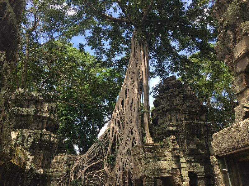 ni-nakljucje-da-so-ta-tempelj-izbrali-za-lokacijo-snemanja-filma-tomb-raider