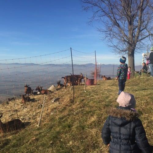 Čudovit razgled z vrha Sv. Ane