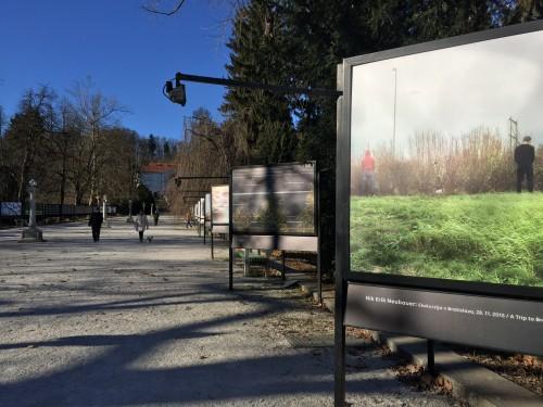 Razstava na Jakopičevem sprehajališču v parku Tivoli, Ljubljana