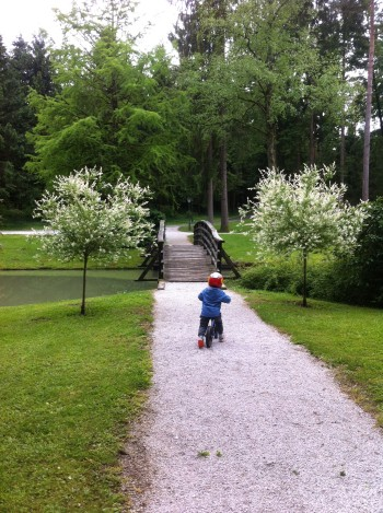Park Brdo je primeren za vozičkanje in vožnjo s poganjalčkom/kolesom, Kranj