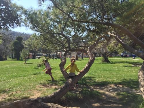 Razgibano otroško igrišče v ozadju. Fiesa