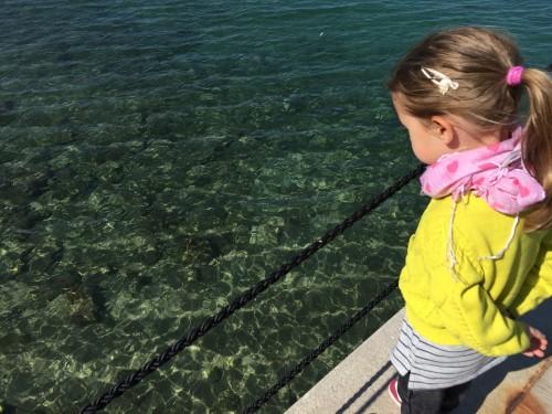 Hranjenje in opazovanje rib iz pomola v Fiesi