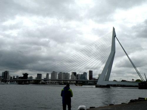 Največji most v Rotterdamu - Erasmus, Nizozemska