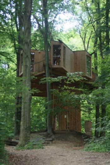 Lesena hišica v drevesnih krošnjah , Celje