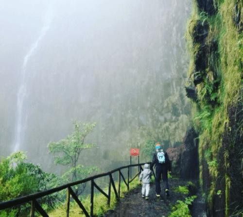 Slap Risco, Madeira