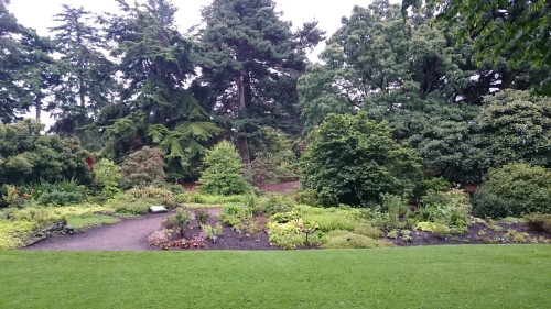 Botanični vrt v Edinburg-u, Škotska z otroki