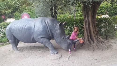 Na nosorogu