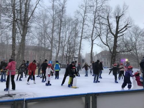 Pingivine in ostale pomagače prevzamete na ledu, plačate pa že na blagajni (ledena fantazija, Ljubljana)