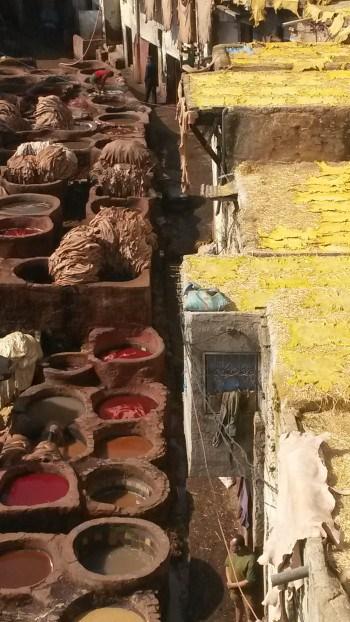 Barve Maroka