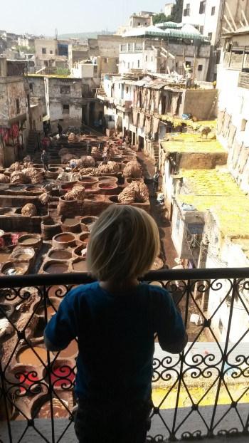 Tradicionalna obdelava in barvanje usnja v Fezu (Maroko z otrokom)