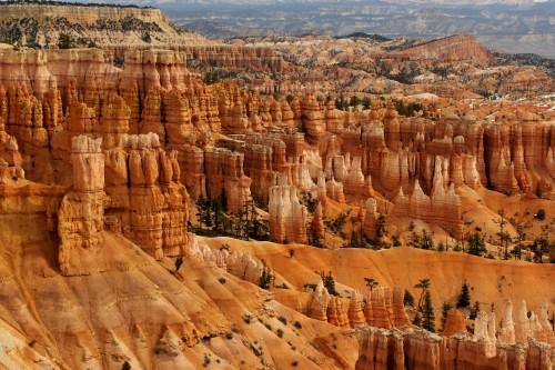 Značilna rdeč stopničast kanen parka Zion (družinsko po narodnih parkih ZDA)