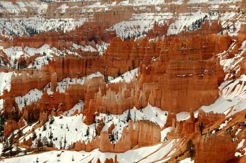 Značilni rdeči kamen Bryce Canyon parka prekrit s snegom (družinsko po narodnih parkih ZDA)