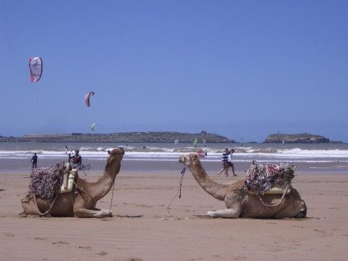 Essouira je idealno mesto za aktivne počitnice ob Atlantiku