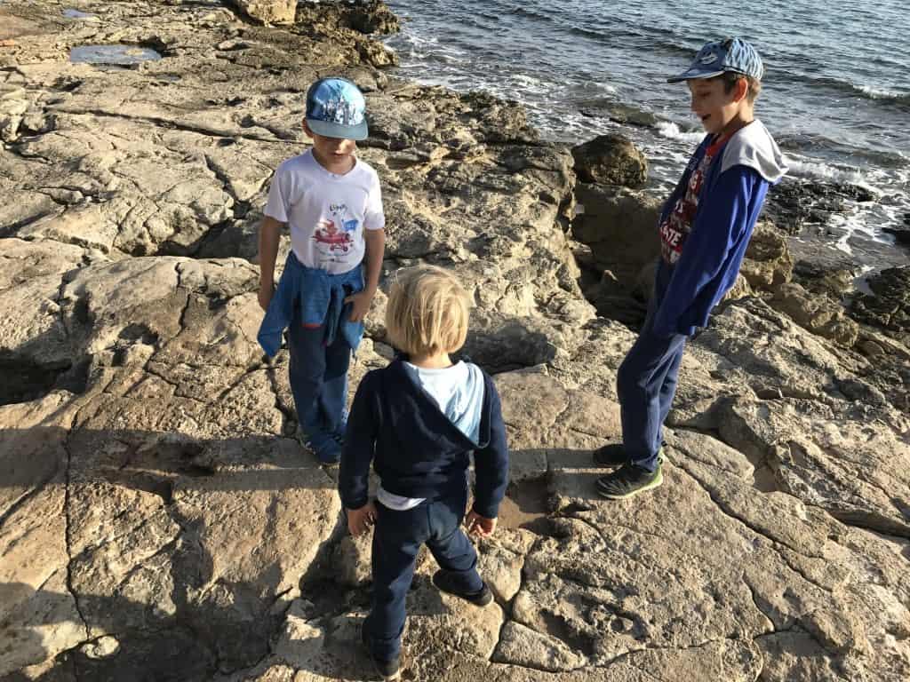 Mulci preučujejo dinozavrovo stopinjo (NP Brioni)