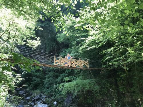 Most čez Zadlaščico (Tolminska korita)