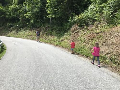 Krajši poti poteka po cesti, izlet Jamnik