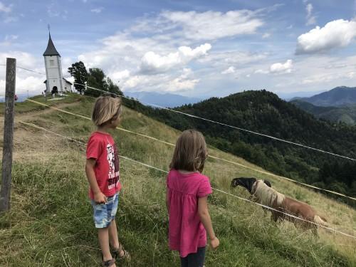 Družina konj, ki se otroci niso mogli nagledati, izlet Jamnik