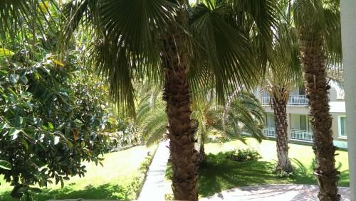 Pogled iz sobe na zelenje naokoli hotela (turčija z otroki)
