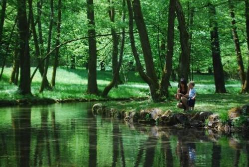Labodi, račke, kamenčki in svežina v parku Izvir Bosne,družinski roadtrip po Bosni