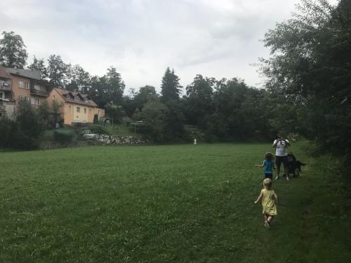 Travniki med bregom Kokre in hišami starega mestnega jedra Kranja