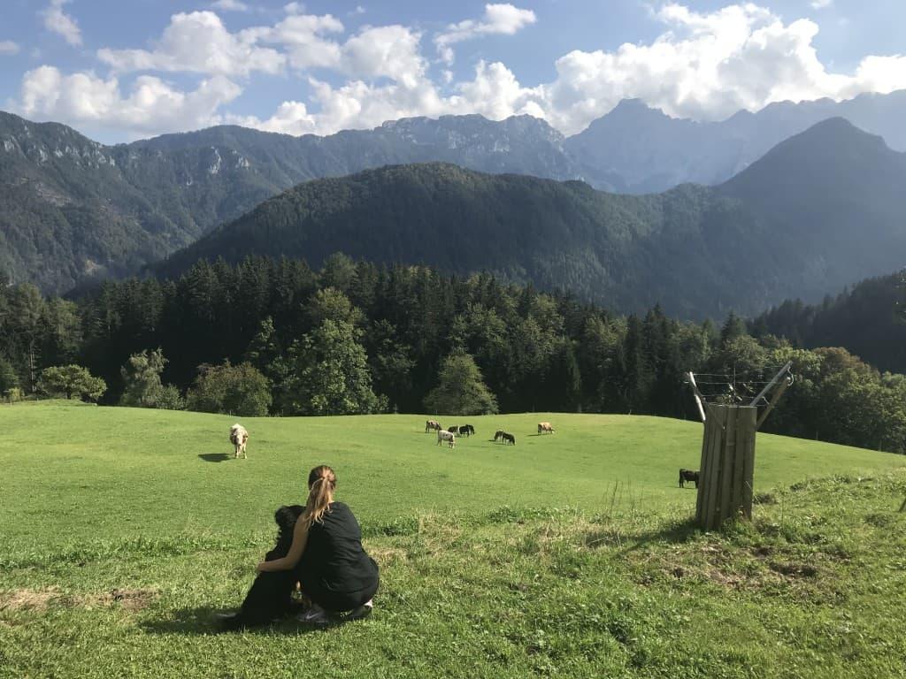 Razgled s Turisticne kmetije Žibovt, Solčavska panoramska cesta