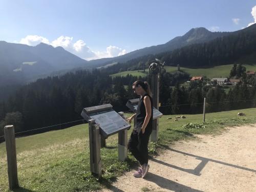 Razgled s postojanke Pastirkovo, Solcavska panoramska pot