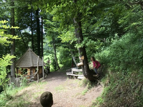 Del krožne poti po parku - skulptura volka iz drevesa
