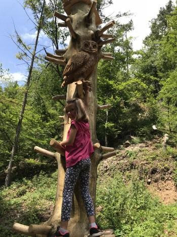 Ob leseni sovi v Polhovem doživljajskem parku