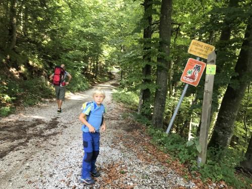 Ko pridemo do gozda zagledamo oznako P2 - Pot pod Storžičem