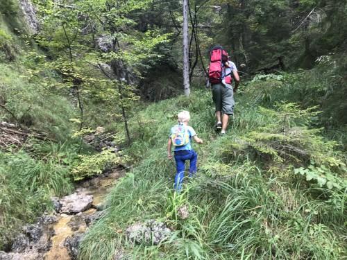 Pot do slapa Brinca, višje ob potoku Milka (Pot pod Storžičem)