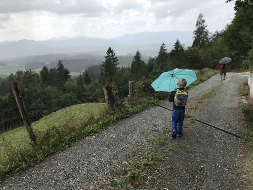 Lepi razgledi, kljub dežju