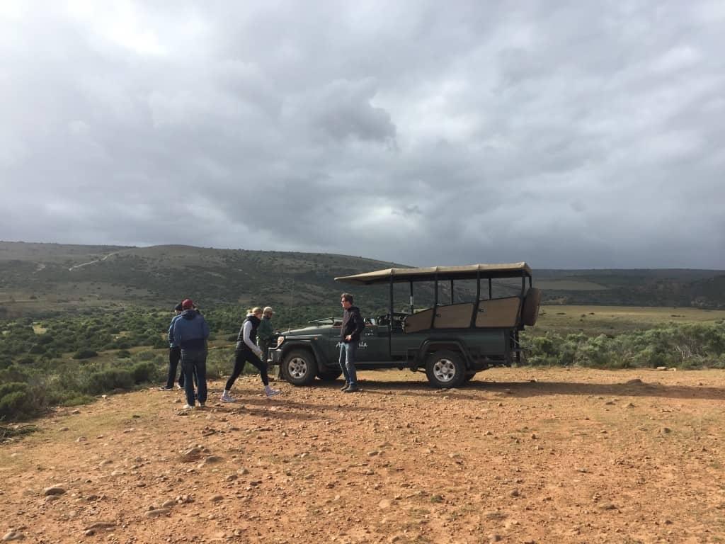 Piknik v afriški savani